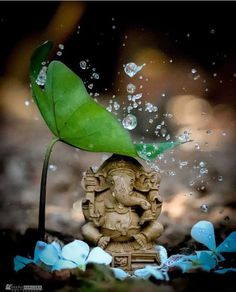 Image may contain: plant, night and outdoor Ganesh Wallpaper, Lord Shiva Hd Wallpaper, Lord Ganesha Paintings, Lord Shiva Painting, Ganesha Art, Krishna Art, Ganesh Statue, Shree Krishna, Hanuman