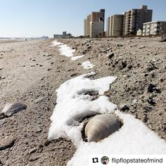 Our wee bit of #snow has mostly melted away and personally I could not be happier.  #Repost @flipflopstateofmind (@get_repost)  Winter at the beach #northmyrtlebeach #mymyrtlebeach #myrtlebeach #myrtlememories #littleriversc #grandstrand #southcarolina #discoversc #lovewhereyoulive #exploreeverything #seastheday #beach #snow #instagood #beach #explorenmb #sandandsnow  #seashells