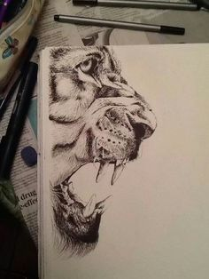 Snarling Tiger Drawing with Charcoal Amazing Drawings, Cool Drawings, Amazing Art, Lion Drawing, Painting & Drawing, Ap Drawing, Pencil Art Drawings, Art Drawings Sketches, Pencil Sketching