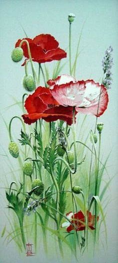 Painting on silk Alina Oseeva Fair Masters handmade Art Watercolor, Watercolor Flowers, Botanical Illustration, Botanical Prints, Red Poppies, Poppies Art, Silk Painting, Flower Art, Beautiful Flowers