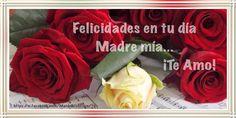 FrasesparatuMuro.com: Felicidades en tu dia Madre Mia