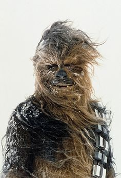 Explore Chewbacca's Behind-the-Scenes Photos