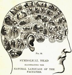 The symbolical head #neuroscience #infographic