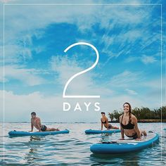 SUP yoga in #Hawaii is on another level. 2 DAYS until tickets go on sale for Wanderlust #Oahu at @turtlebayresort! See you in February? Promise?  #Wanderlust2016 #WanderlustFestival #FindYourTrueNorth #TurtleBayResort