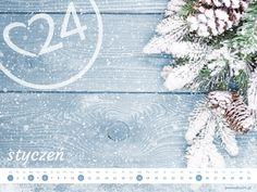 Promedica24 - e-kalendarz - Styczeń 2015 1024x768