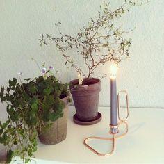 @frupoulsen 146❤️ nye planter og Potter fra de4årstider i Lyngby