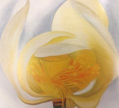acqua-di-fiori:  White Lotus - Georgia O'Keeffe, 1939 Oil on Canvas, 20 x 22 Inches Muscatine Art Center, CR 972.
