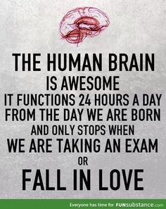 And this is the human brain...