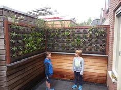 Verticaal tuinieren met een vertiplant op maat