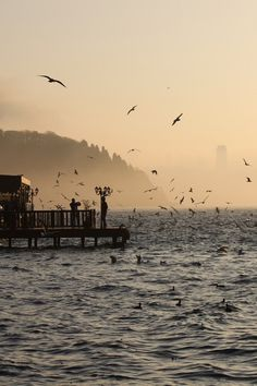 winsnap: Mist at the Istanbul Bosphorus by Mesty