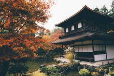 Best Luxury Ryokans Between Tokyo & Kyoto Tokyo Neighborhoods, Tokushima, Japan Destinations, Asian Architecture, Japan Travel Tips, Visit Japan, Travel Companies, Stay The Night, Best Hotels
