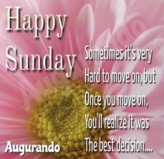 Best Good Morning Sunday Images! Always Updated Images! Good Morning Beautiful Flowers, Good Morning Beautiful Quotes, Good Morning Sunday Images, Happy Sunday Quotes, Blessings, Motivation, Inspiration