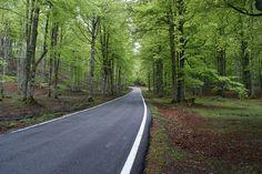 Aralar Road (8) by lugaresdelibro.es, via Flickr