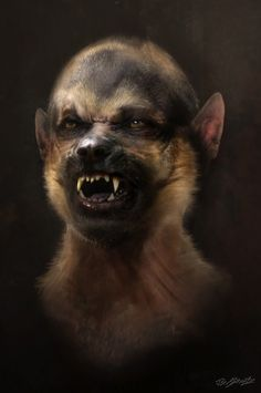 GRIMM is back early. Here's some of the fantastic Wesen Creature concept art for Season 1 by Jerad Marantz . Grimm Tv Series, Grimm Tv Show, Weird Creatures, Magical Creatures, Fairytale Creatures, Nbc Grimm, Grimm Film, Grimm Cast, Detective