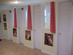 Dog Kennels | Dog and Cat Boarding Kennel League City, Dickinson Texas : Tail ...