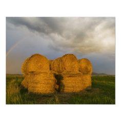Briiliant rainbow over hay bales