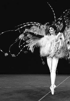 1963 - Yves Saint Laurent costume for Zizi Jeanmaire. ✯ Ballet beautie, sur les pointes ! ✯
