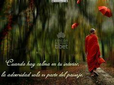 Reflexion rincon del tibet