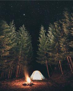 www.joliesse.ru  вдохновение ночь поход звезды палатка костер романтика