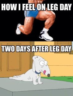 A workout that's not intense is hardly a workout. Pain lets you know you're working hard, but this pain is especially unbearable after leg day and these 12 leg day memes are exactly how we feel after a furious day of exercising and working out on leg day! After Leg Day Meme, Leg Day Memes, Leg Day Humor, Leg Day Quotes, Crossfit Humor, Gym Humour, Sports Humour, Fitness Motivation, Fitness Memes