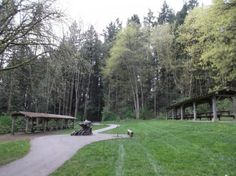 50 Shades, Shades Of Green, Picnic Area, Rv Parks, Travel Information, Surrey, British Columbia, Lodges, Acre
