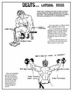 The Iron Guru Series: Gironda Shoulder Training Gems. By Vic Goyaram ~ BODYBUILDING MAURITIUS & SOUTH AFRICA
