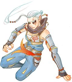 Hyrule Warriors | Impa