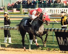 Black Tie Affair led at every call to win the 1991 Breeders' Cup Classic, on route to being named Horse of the Year.
