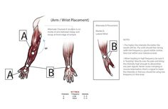 How to Use: Electrode Placement Information & Videos Tens Electrode Placement, Body Rock, Biceps, Being Used, Charts, Health, Graphics, Health Care, Graph Of A Function