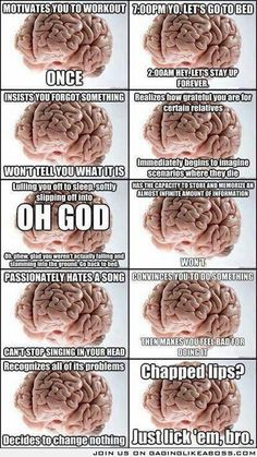 Brain, you really are a scumbag.