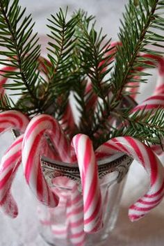 Keeping it traditional with candy canes.