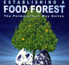 """Establishing A Food Forest"" - pure video gold on how to live a sustainable existence. watch on . . ."