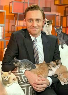 The 2 cutest thing on the world in a same picture :D Cats and Tom^^