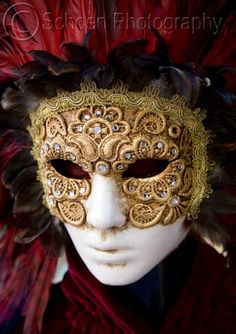 Venetian lace mask with red feathers.