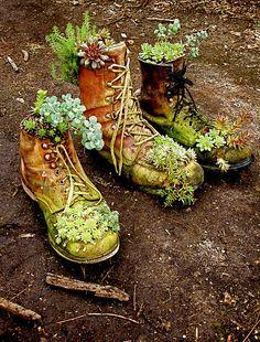 recyclable boots for the garden Mini Cactus Garden, Succulent Gardening, Succulent Terrarium, Succulents Garden, Patio Planters, Flower Planters, Farm Gardens, Outdoor Gardens, Old Boots