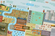Feeding the World Sustainably - graphic comparing industrial agriculture to agroecology
