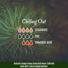 I love the spicy note of Cinnamon Bark Essential Oil in this blend. Very stimulating yet nice to chill out to when combined with the woodsy scents of Cedarwood and Pine!