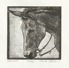 """Original Horse Print - Equine Print - Original wood engraving - Equine Art - Western Horse Print. This country western mule features hand printed details to bring character to any room in your home or office. Listed is an original hand carved engraving that was printed off a maple wood block. The image features a closeup of a mule with a western bridle on. The print is titled """"Lovechild"""". After moving to TX a year ago, I thought it would be only appropriate to make some work related to my..."""