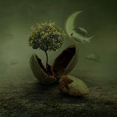 seed by beyzayildirim77 on DeviantArt