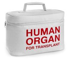 Organ Transport Lunch Cooler, http://www.amazon.com/dp/B00J3A6OYE/ref=cm_sw_r_pi_awdm_T2x2tb0QQZBTY