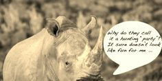 """TAKE ACTION!  Help Stop Rhino hunting in the Timbavati, South Africa !  """"Good day I would like to advise you about the insensitive & immoral decision from the Timbavati Private Nature Reserve to put out two Rhino hunts in the Timbavati Private Nature Reserve for this year - this amidst the species being in the death rows of survival & people uniting in this serious cause. Please take a stand against them"""".... Thanks Paul Kruger Safaris  PLZ Sign & Share!"""