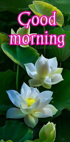 Good morning Rose S.Lavanya