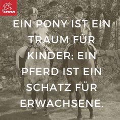 Pferdesprüche & Pferde pflege-emma-pferdefuttershop.de 23