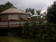 Glamping in Hawaii - Kona Yurt | GlampingGirl.com