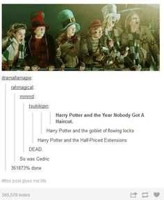 Slow clap for the harry potter fandom. HARRY POTTER AND THE HALF PRICED EXTENSIONS<< that's golden