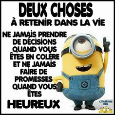 les minions - Page 26 Minion Humour, Minion S, Funny Minion, Funny Picture Quotes, Funny Pictures, Simply Life, Troll Face, Quote Citation, Minions Quotes