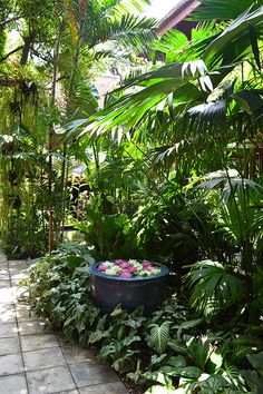 Jim Thomsons House and Garden, Bangkok, Thailand | Flickr - Photo Sharing!