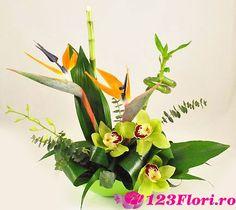 Doar pe www.123flori.ro