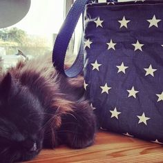 """A new fabric, blue star coated linen just being finished, and """"checked"""" by my sewing room companion, Coco the cat. Handmade Bags, Handmade Handbags, My Sewing Room, Small Crossbody Bag, Bag Making, Stars, Cross Body, Instagram Posts, Crafts"""