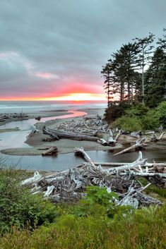 View from Kalaloch Lodge in Olympic National Park, Pacific Ocean, Washington State